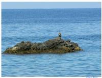 pausa di riflessione   - Capo d'orlando (3516 clic)