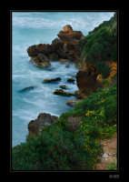 Scogliera - Punta Braccetto  - Santa croce camerina (5188 clic)