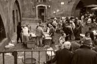 la mitica pescheria di catania  - Catania (3166 clic)