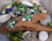 composizione con tartarughe Tartarughe di ceramica siciliana su pietre e conchiglie varie-  24 febbr