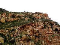 la montagna di Castelbuono (707 clic)