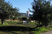 ORTO BOTANICO Orto botanico con scultura di  Medhat Shafik   QANAT, LE ROTTE DEL  CIELO  - Gibellina (800 clic)