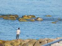 pescatore a Brolo (1669 clic)