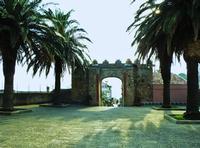 Palme della Chiesa della SS.Trinità Porta Durazzesca e palme   - Forza d'agrò (4887 clic)