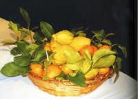 cesto di agrumi  la foto è stata presso la Fondazione Mazzullo in occasione della mostra la terracotta nell'arte del Presepe in Sicilia   - Taormina (12611 clic)