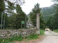 Riserva forestale di Poggio San Francesco   - Giacalone (1023 clic)