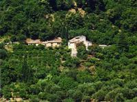Veduta dei Nebrodi e del B.B. Lisycon un suggestivo paesaggio dei monti Nebrodi, visti dal Comune di Sant'Angelo di Brolo  - Sant'angelo di brolo (4730 clic)