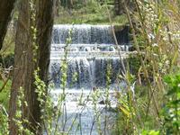 Il torrente di Sant'Angelo di Brolo (3560 clic)