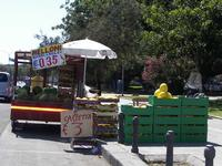 Venditore di melloni  Lungo il foto italico di Palermo spesso si incontrano in estate venditori di melloni a prezzi stracciati  - Palermo (2502 clic)