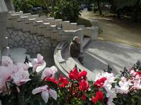 particolare Villino Florio Un attimo di riposo dopo la visita turistica all'interno del Villino Flor