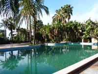 Hotel Garden La vegetazione lussureggiante e la piscina del parco dell'Hotel Garden di Trappeto che è una frazione di S.Giovanni La Punta (CT)  - Trappeto (2365 clic)