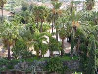 Hotel Garden  La vegetazione lussureggiante del parco dell'Hotel Garden di Trappeto che è una frazione di S.Giovanni La Punta (CT)  - Trappeto (2380 clic)
