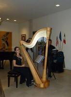 L'arpista Ginevra Gilli ( Elendil ) In questa sua esibizione l'arpista Ginevra Gilli ( Elendil ) era accompagnata dal flautista Giuseppe Sciuto.  - San giovanni la punta (2424 clic)