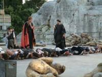 Rappresentazioni Classiche 2004 - teatro Greco di Siracusa.  - Siracusa (1363 clic)