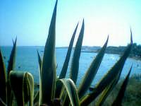 - Marina di noto (7241 clic)