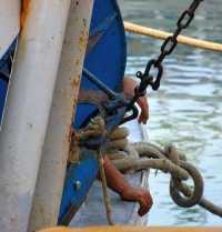 Mani da Pescatore  - Mazara del vallo (3736 clic)