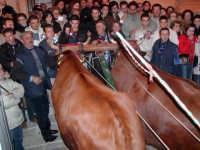 Buoi per la festa del SS. Crocifisso Calatafimi 2004  - Calatafimi segesta (11175 clic)