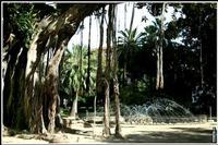 VILLA GARIBALDI   - Palermo (3970 clic)