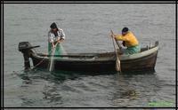 la pesca   - Palermo (2039 clic)