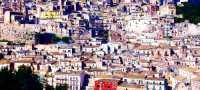 paesaggio ibleo  - Ragusa (3547 clic)
