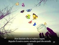 Le farfalle di ... Curcio. CARTOLINA  PUBBLICITARIA: LE FARFALLE di CURCIO  - Sommatino (2230 clic)