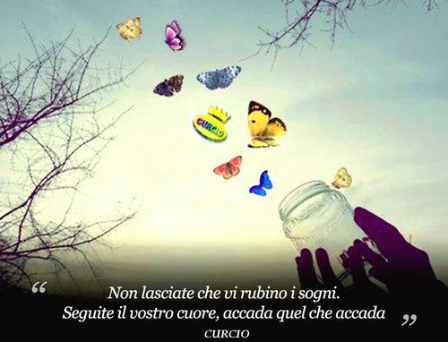 Le farfalle di ... Curcio. - SOMMATINO - inserita il 23-Sep-14