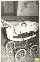 Angela Curcio ANGELA CURCIO - 1963  - Sommatino (2126 clic)