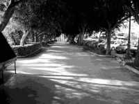 Belvedere...(lato sud)  - Termini imerese (3961 clic)