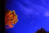 Costellazione di Orione  - Sciacca (4062 clic)