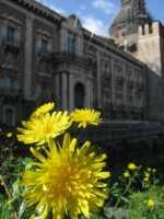 monastero dei benedettini  - Catania (3314 clic)