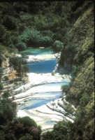 Veduta dei laghetti;in primo piano il laghetto grande.  - Cava grande del cassibile (13583 clic)