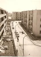 Quartiere Borgo Nuovo anno 1965/1966   - Palermo (7776 clic)