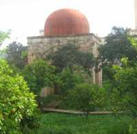 La Cuba Soprana all'interno del giardino di Villa Napoli  - Gennaio 2010  - Palermo (7923 clic)