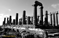 Tempio di Giunone   - Agrigento (4139 clic)