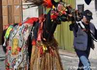 S.Giuseppe sfilata dei cavalli  - Scordia (6840 clic)