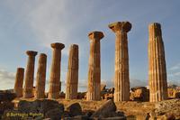 Tempio di Ercole (1255 clic)