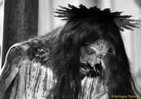 Volto Cristo alla colonna  Simulacro in processione Giovedì santo  - Adrano (11491 clic)