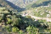 Vallata del torrente Zappardino vista dalla contrada Passoforno  - Piraino (6678 clic)