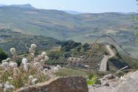 veduta   - Cefalà diana (1079 clic)
