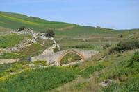 Ponte del Diavolo , detto anche ponte Arabo  Calatrasi.   - Roccamena (957 clic)