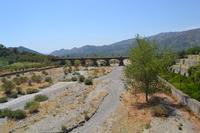 vicino la pineta   - Graniti (2767 clic)