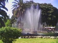 il verde  - Palermo (4909 clic)