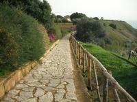 viale che porta alla tomba di pirandello  - Agrigento (5316 clic)
