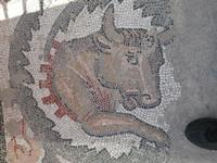 museo dei mosaici  - Piazza armerina (4183 clic)