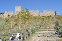 Castello Normanno    - Cefalà diana (736 clic)