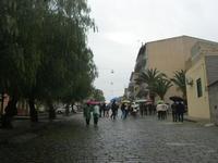 sotto la pioggia - 18 aprile 2010  - San biagio platani (3934 clic)