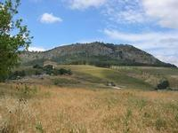 panorama e tempio - 2 giugno 2010  - Segesta (3081 clic)