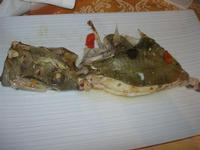 pesce San Pietro all'acqua pazza - La Cambusa - 3 aprile 2011  - Castellammare del golfo (1411 clic)