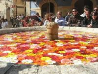 fontana - vecchio mercato - Infiorata 2010 - 16 maggio 2010  - Noto (2803 clic)