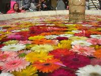 fontana - vecchio mercato - Infiorata 2010 - 16 maggio 2010  - Noto (2682 clic)